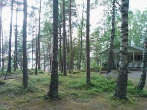 Stressitön mieli itsetuntemuspäivä. Ruisranta, Ruissalo, Turku.